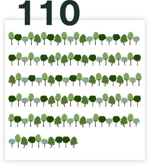110 trees as a present - Full on Forest