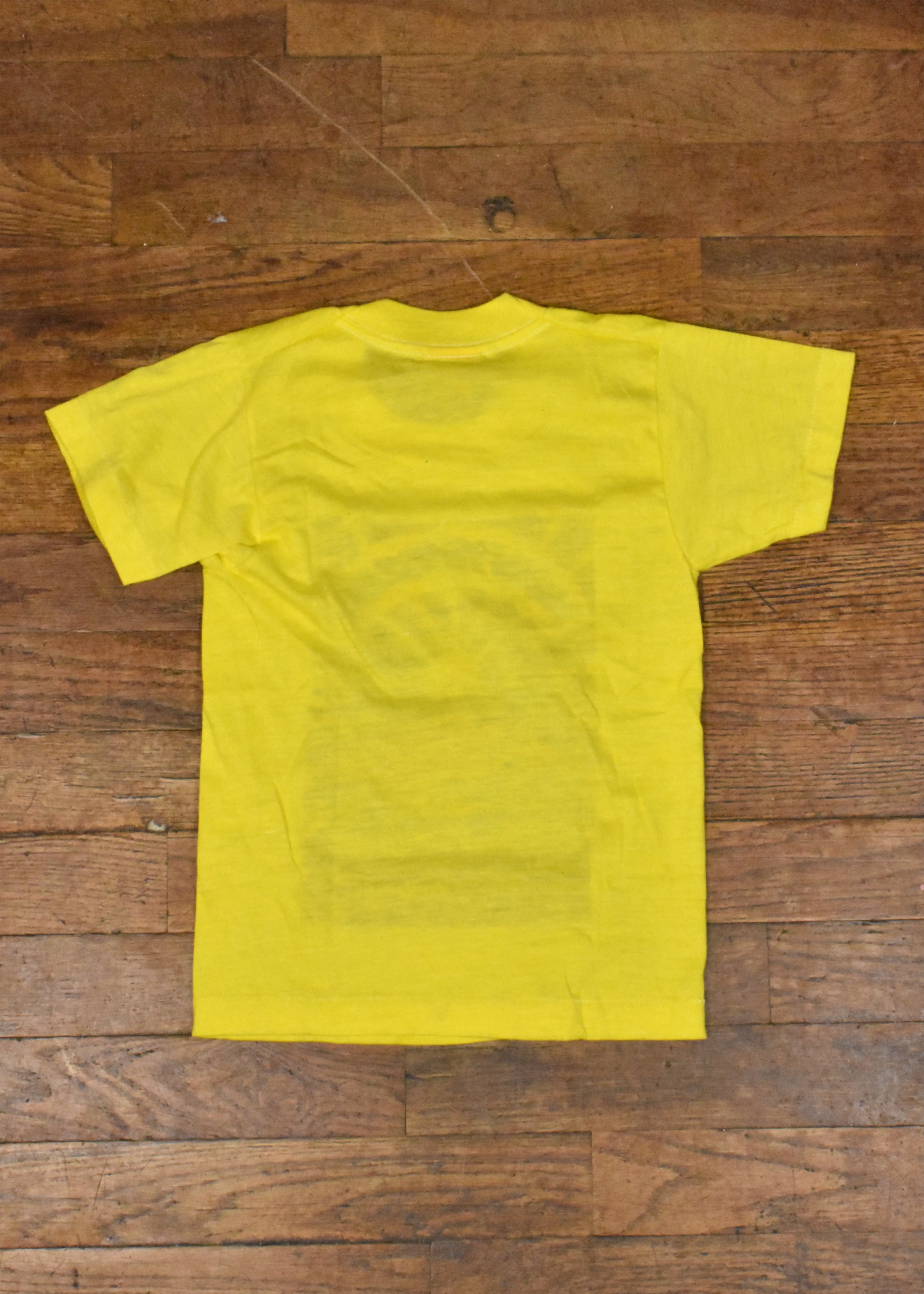 70's-80's Kids Yellow New Mexico Tierra Encantada T-Shirt