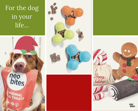Sustainable dog gifts