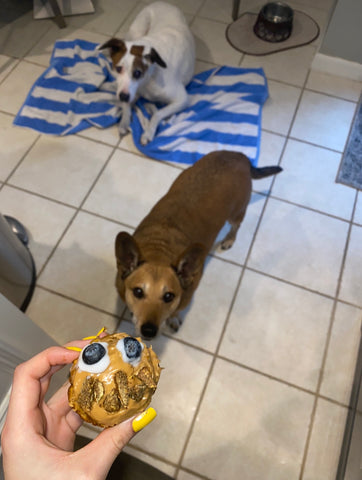Dogs waiting to try the gut friendly, allergy friendly, and eco friendly pumpkin muffin dog treats made with our original dog treats