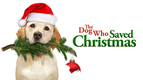 The Dog Who Saved Christmas: movie to watch with your pet