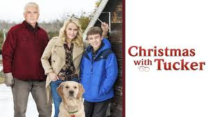 Christmas with Tucker: a holiday movie to watch with your furry friend