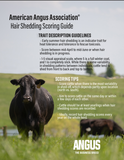 Hair Shedding Scoring Guide