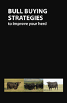 Bull Buying Strategies Booklet