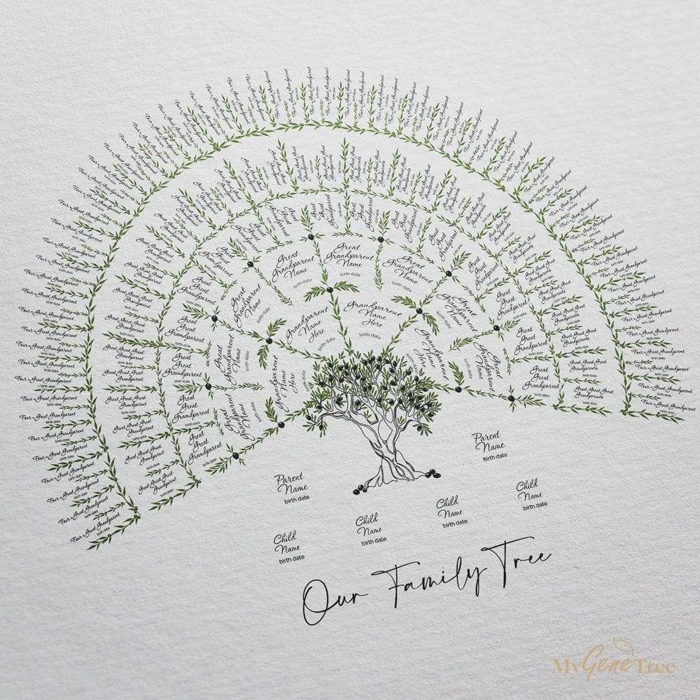 Olive Family Tree 7 Generations