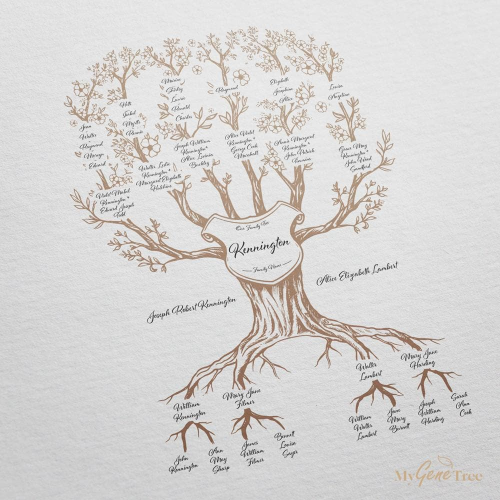 'Limited Edition' Family Branches Taupe Digital Family Tree Template MyGeneTree