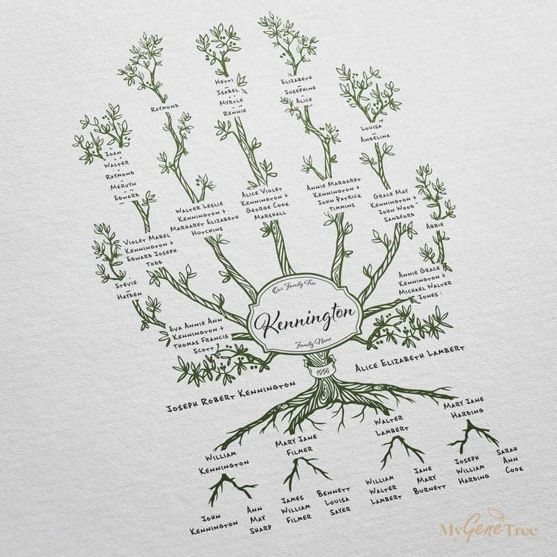 'Limited Edition' Olive Family Branches Moss Green Digital Family Tree Template MyGeneTree