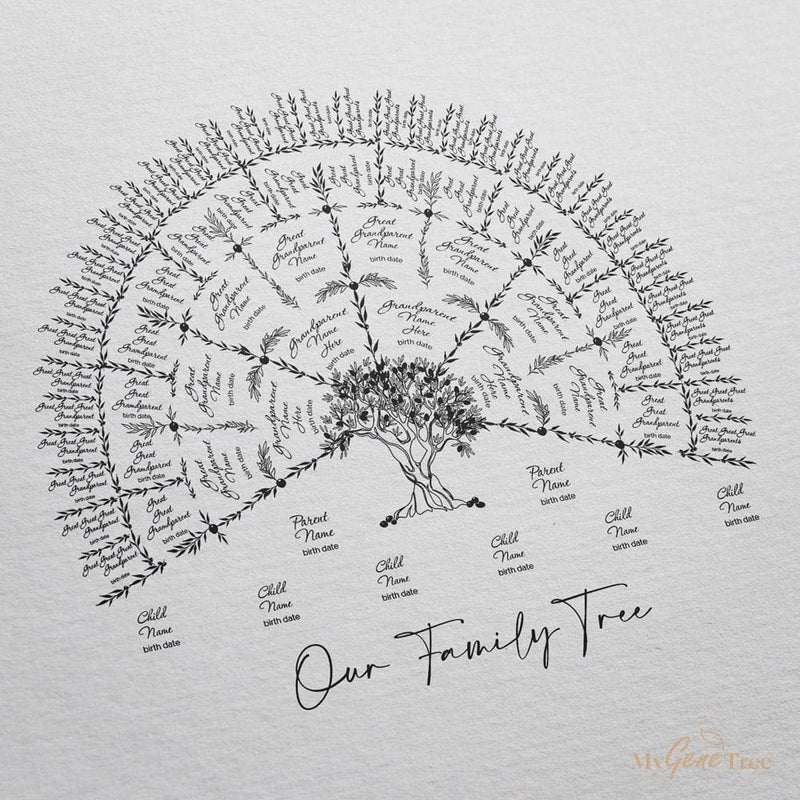 'Limited Edition' Olive Family Tree Black Digital Family Tree Template mygenetree