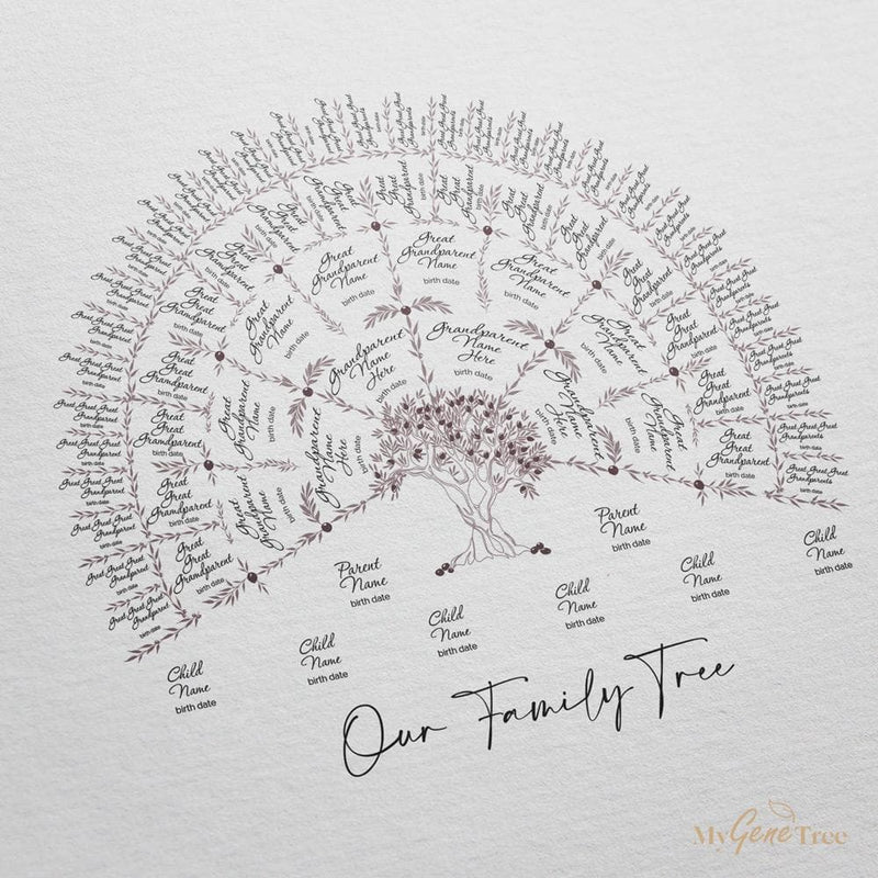 'Limited Edition' Olive Family Tree Venus Digital Family Tree Template MyGeneTree