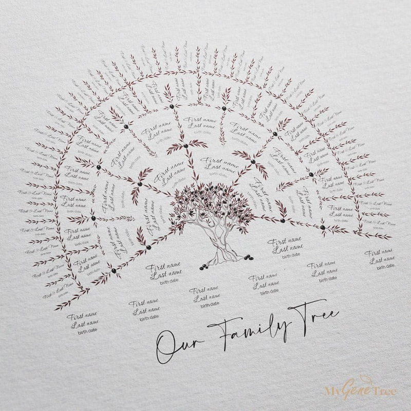 'Limited Edition' Rosewood Family Tree Digital Family Tree Template mygenetree