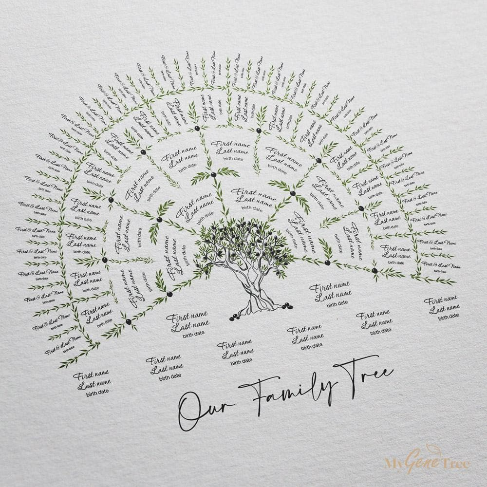Olive Family Tree Customized Digital Family Tree Template MyGeneTree