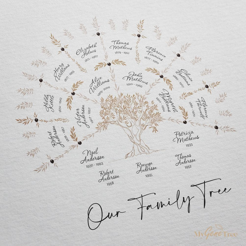 'Limited Edition' Olive Family Tree in Taupe palette Digital Family Tree Template MyGeneTree