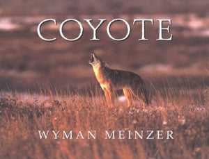 Coyote  - Signed by Wyman Meinzer