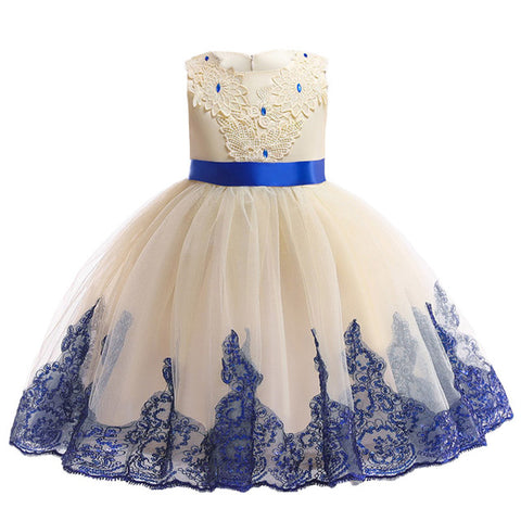 Elegant Princess Dress for any occasion