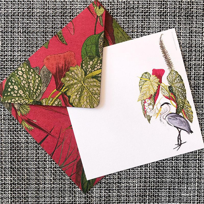 Note Card Sets - Fuschia & Lime