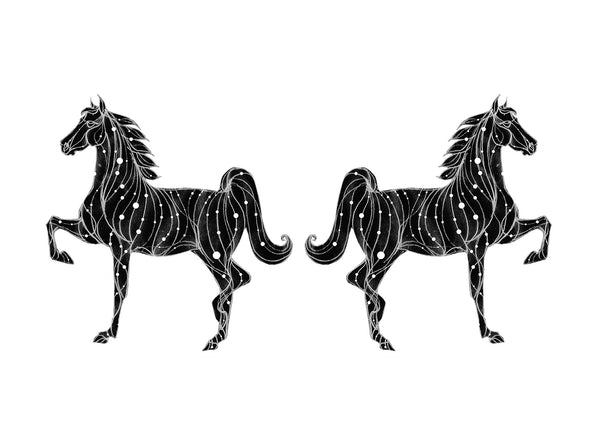 The Constellation Of The Silver Horse