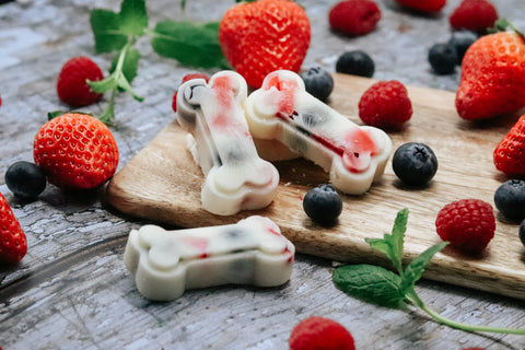 frozen fruit and yoghurt treats for dogs