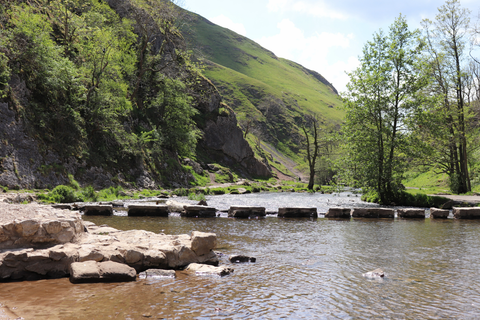 DOVEDALE STEPPING STONES - ANNUAL SCHNAUZER WALK