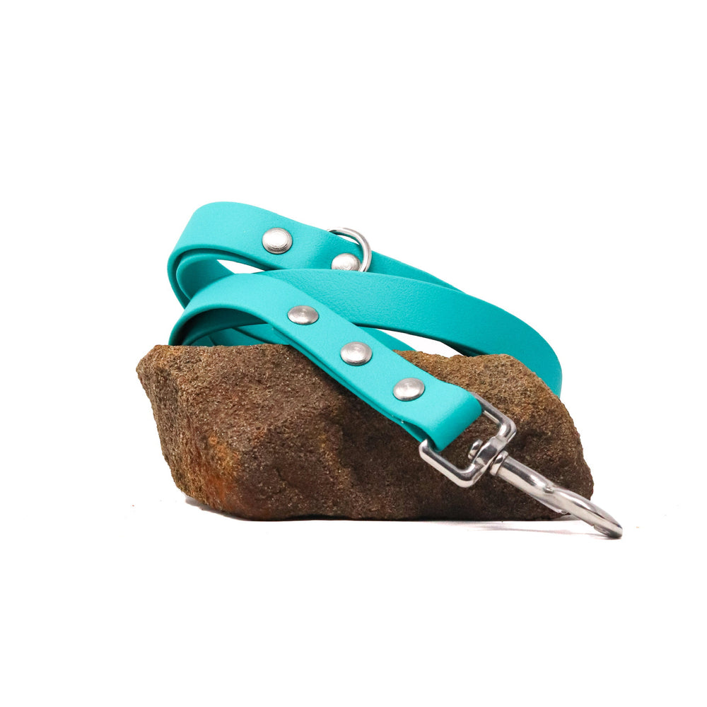 THE COASTAL COLLECTION GENUINE BIOTHANE® DOG LEAD