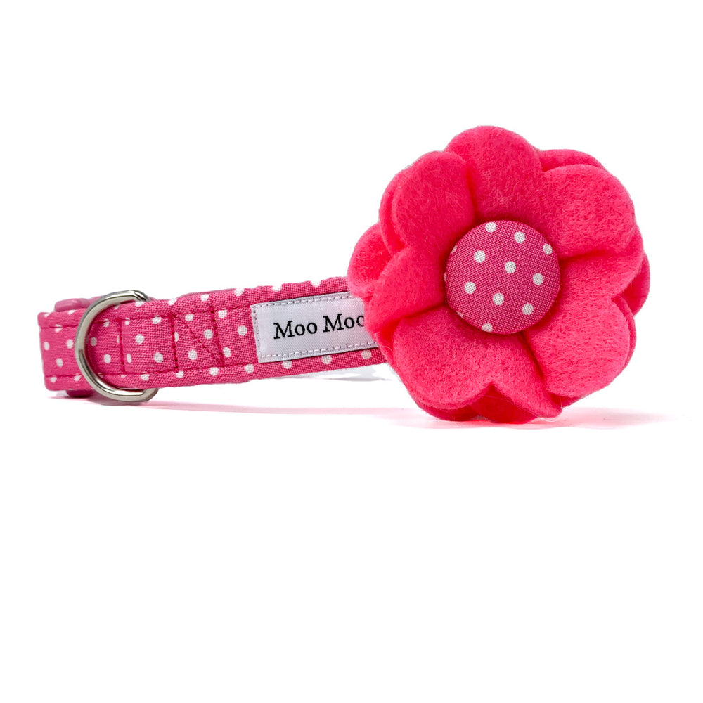 'POLKA DOT' DOG COLLAR AND OPTIONAL LEAD IN CANDY PINK