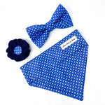 'POLKA DOT' DOG COLLAR FELT FLOWER IN ROYAL BLUE