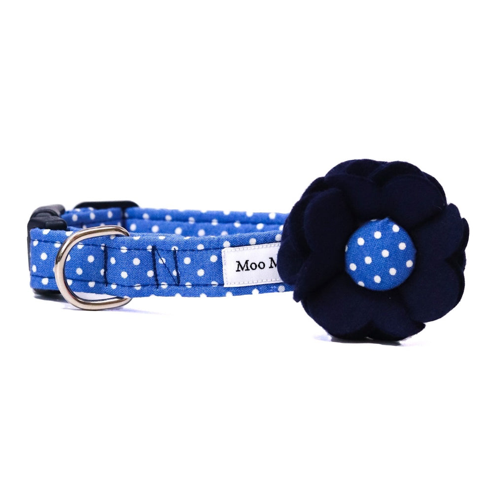 'POLKA DOT' DOG COLLAR AND OPTIONAL LEAD IN ROYAL BLUE