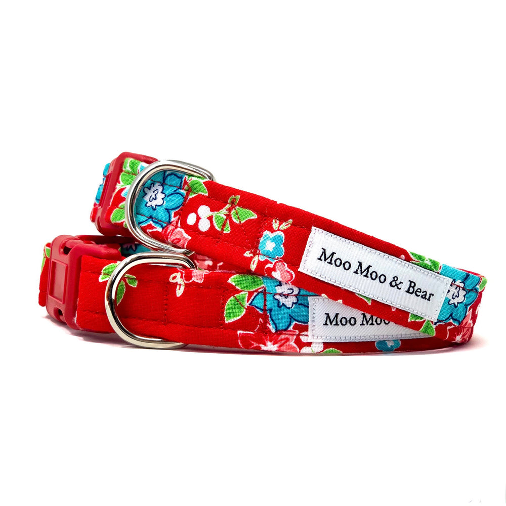 'ROSIE' DOG COLLAR AND OPTIONAL LEAD