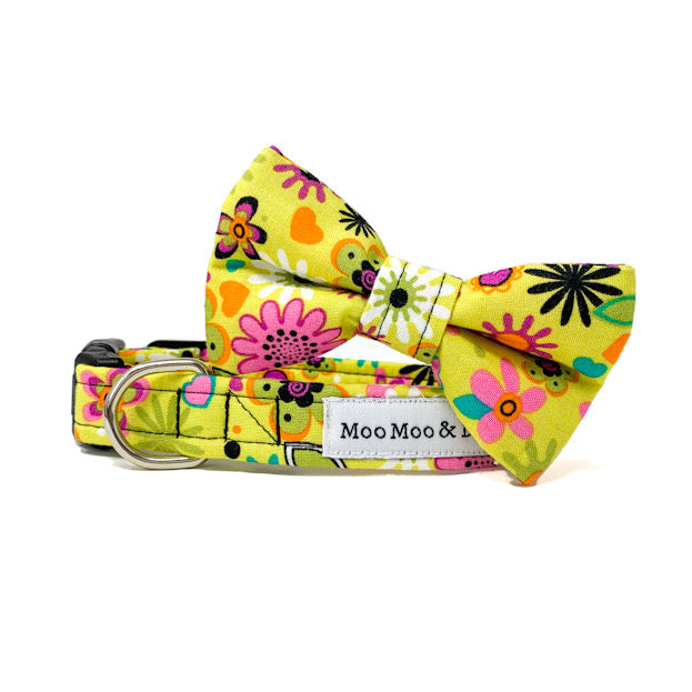 'SECRET GARDEN' FELT DOG COLLAR FLOWER IN CITRUS