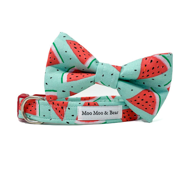 'WATERMELON' DOG COLLAR AND OPTIONAL LEAD
