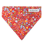 kayak red floral liberty of London dog bandana