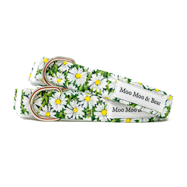 Daisy dog collar | Moo Moo & Bear