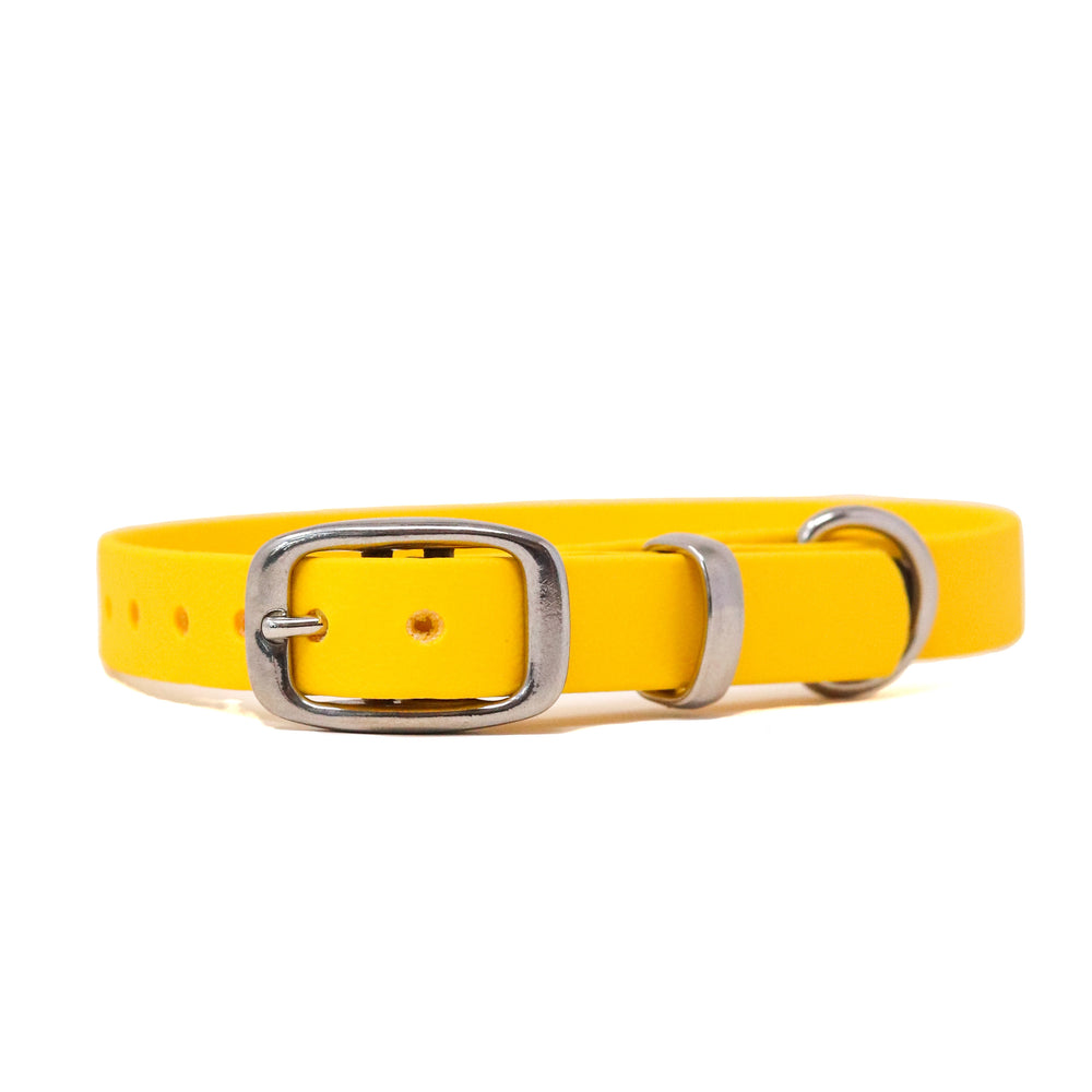 THE MEADOW COLLECTION GENUINE BIOTHANE® DOG COLLAR -1ST EDITION - CORNFLOWER YELLOW