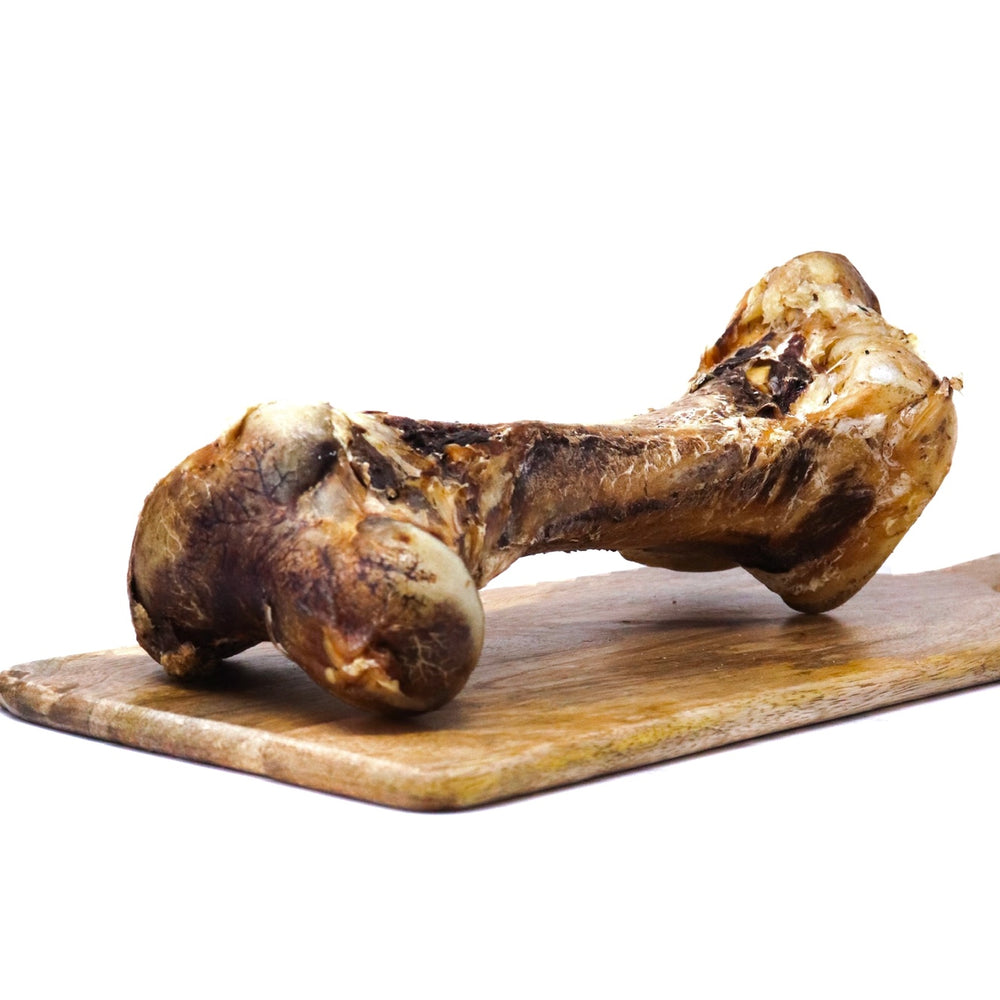JR PET PRODUCTS LARGE OSTRICH BONE