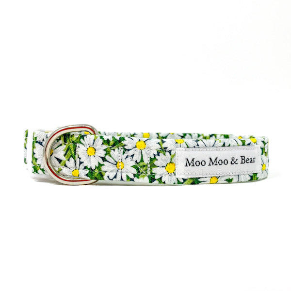 Whoops a daisy dog collar handmade