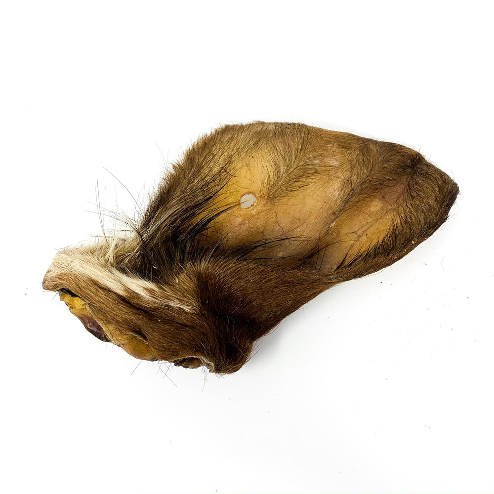 JR PET PRODUCTS HAIRY COW EARS