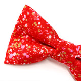'POP' DOG BOW TIE IN RED