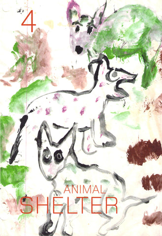 Animal Shelter Journal