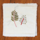 Run Home: Fern Coasters