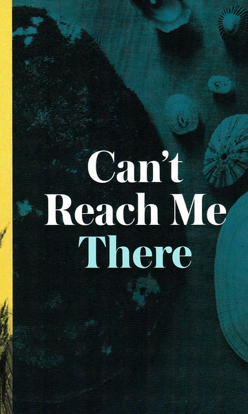 Sarah Lehrer-Graiwer: Can't Reach Me There