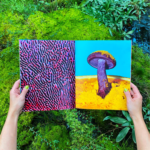 Phyllis Ma: Mushrooms and Friends 2 book