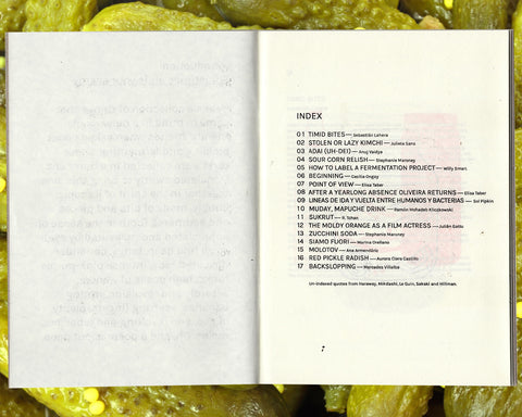 Mercedes Villalba & Martín Lowenstein (Editors): Revolt, fervent friends: Stories, spells, and poems of pickles and ferments.