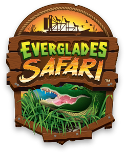 Everglades Safari
