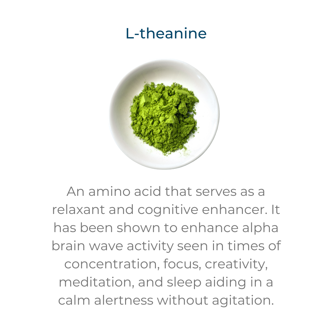 L-theanine – an amino acid that serves as relaxant and cognitive enhancer. It has been shown to enhance alpha brain wave activity seen in times of concentration, focus, creativity, meditation, and sleep aiding in a calm alertness without agitation.
