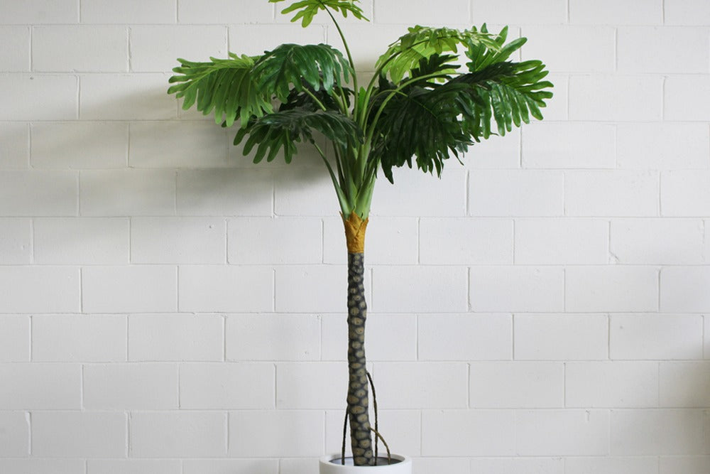 artifical plants and trees for hire for parties, weddingss and events in orange, bathurst, dubbo and throughout central west