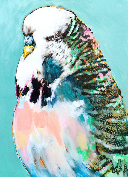 Alissa Wright Budgie artwork - available at The White Place, Orange NSW