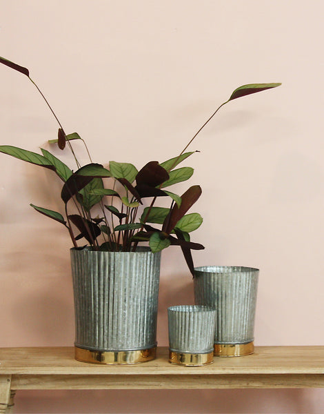 ribbed and galvanised iron and brass pots, available in three sizes at the white place, orange nsw