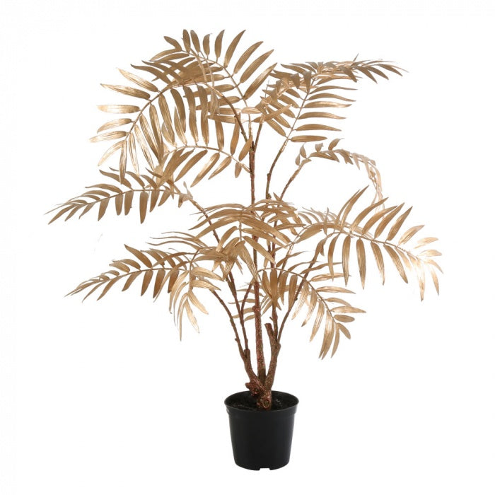Gold potted palm