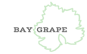 Bay Grape
