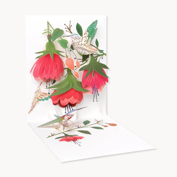 Hummingbird Birthday Greeting Card