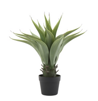 Faux Agave Plant